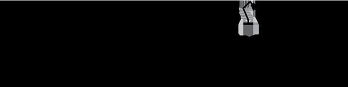 The Industrial Design Company Logo